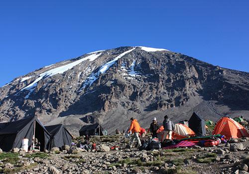 Mt Kilimanjaro Climbing Safaris