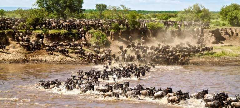 3 days masai mara safari package