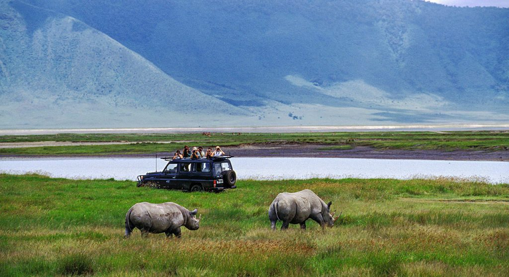 3 days Tanzania budget wildlife safari