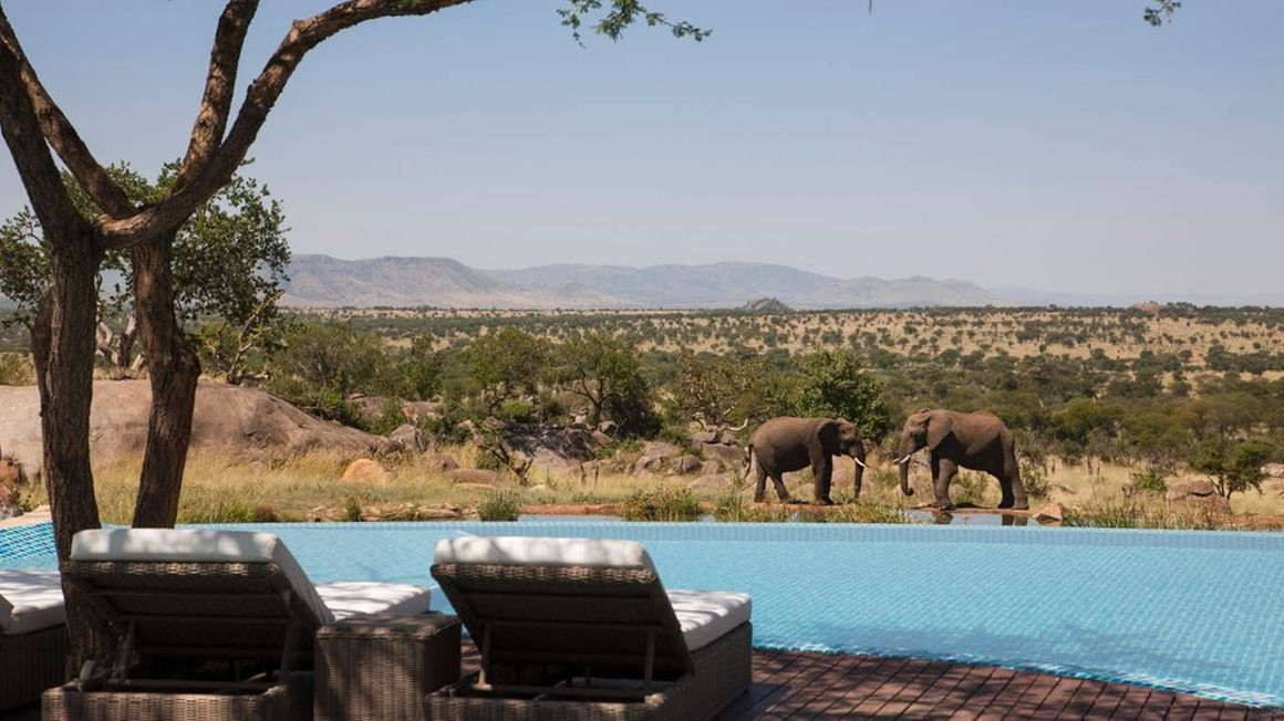 5 days Northern Tanzania safari tour